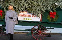 Первая леди США приняла рождественскую ель у крыльца Белого дома