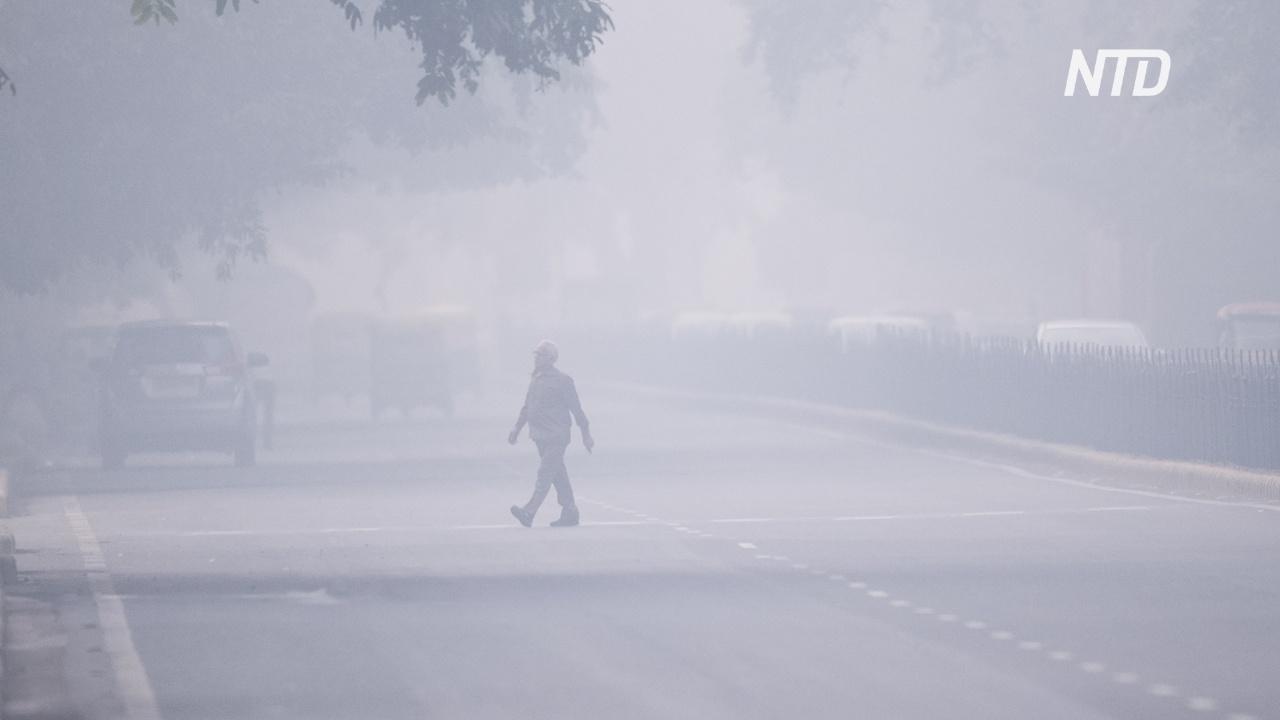 Чиновники и экологи спорят о причинах смога в Нью-Дели