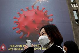 В Южной Корее два дня подряд регистрируют более 500 новых случаев COVID-19