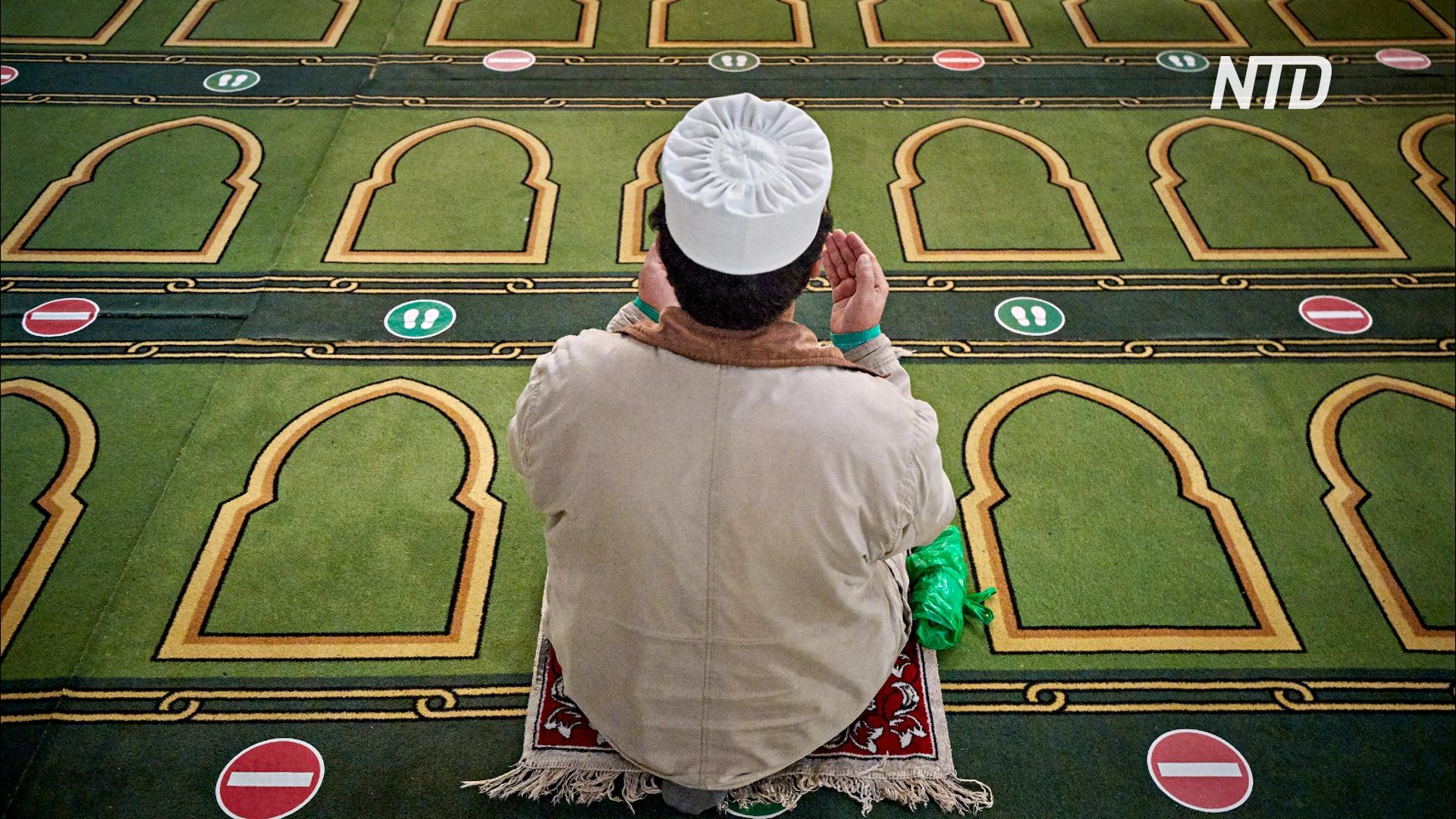 Во Франции проверяют мечети, в которых, возможно, призывают к радикализму