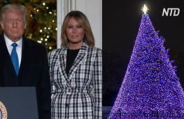 Президент и первая леди США зажгли огни на национальной рождественской ёлке