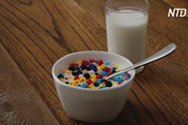 Сколько пластика мы едим?