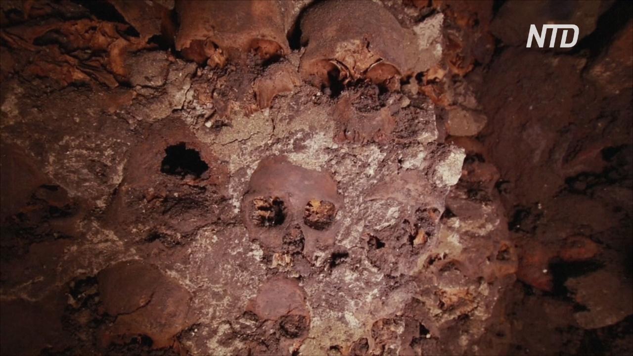 В Мехико нашли ещё 119 черепов в знаменитой ацтекской башне