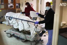 Число умерших от COVID-19 в США превысило 300 тысяч