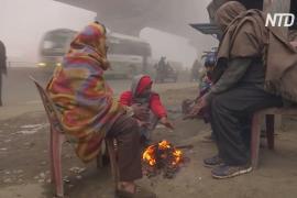 Север Индии окутали холода