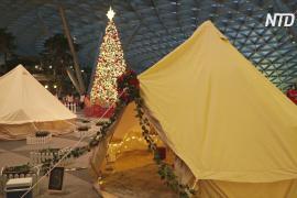 Вместо авиарейса – палатка: в аэропорту Сингапура оборудовали гламурный кемпинг
