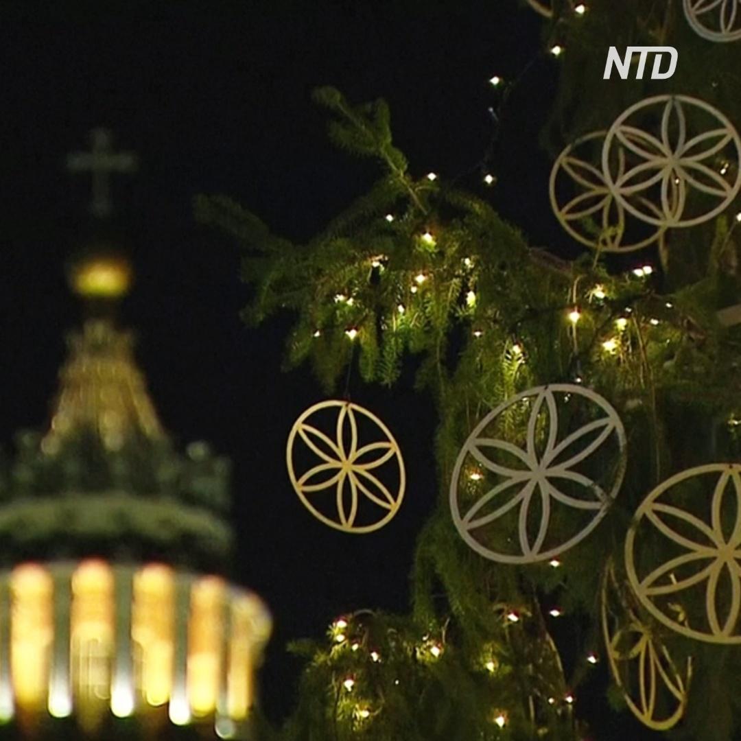 Как выглядит рождественская ёлка в Ватикане