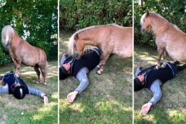 Могут ли пони сделать искусственное дыхание человеку? Весёлое видео