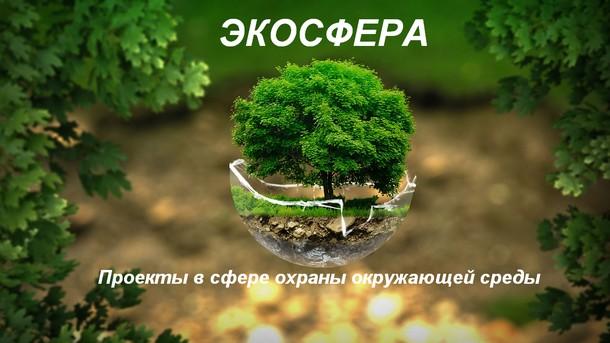 Крупные проекты в сфере экологического аудита