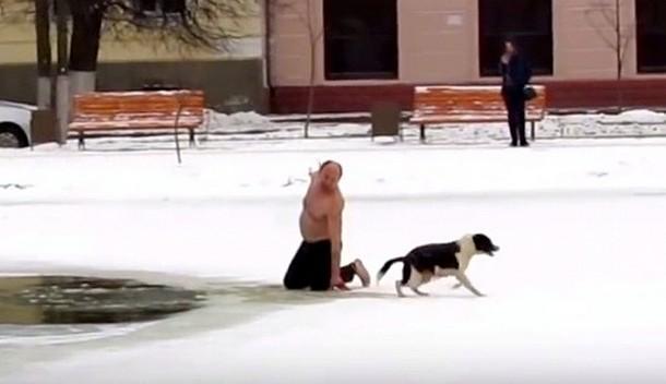Novyj risunok 3 1 - Как мужчина вытаскивал бродячую собаку из полыньи