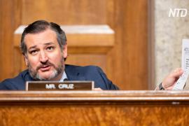Сенатор США Тед Круз возглавил группу из 10 республиканцев, которые оспорят результаты выборов