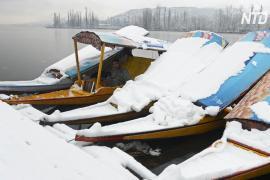 Кашмирская долина в Индии принарядилась в снежное платье