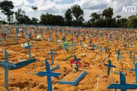 В Бразилии от COVID-19 умерло более 200 000 человек
