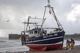 Шотландские рыбаки приостановили экспорт в ЕС из-за новых правил после «брексита»