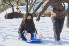 Южнокорейцы раскупили все санки из-за снегопада и закрытых зимних курортов