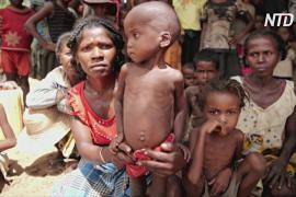ВПП: более 1,4 миллиона жителей Мадагаскара будут нуждаться в продовольственной помощи