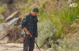Тасманийский кладоискатель помогает людям найти потерянные ценности