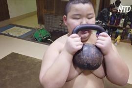 10-летний японский сумоист весит 85 кг и побеждает соперников старше себя