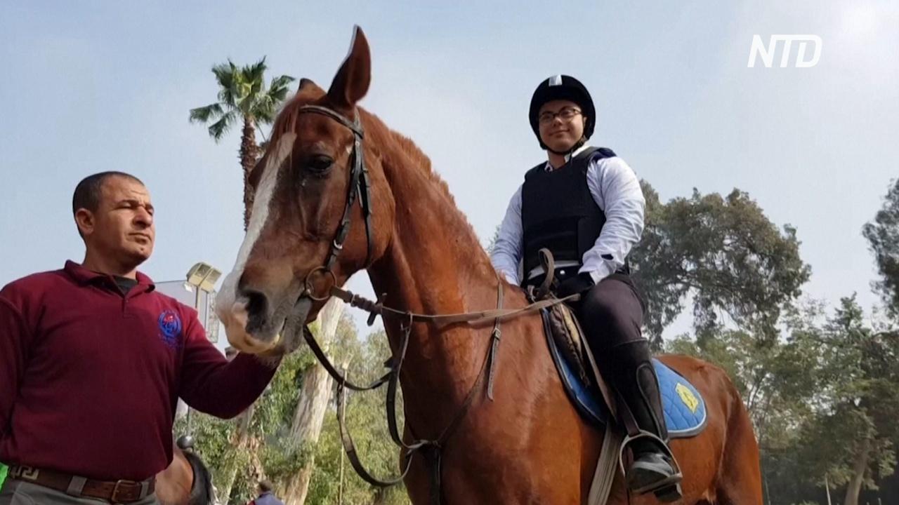 В Египте лошади помогают детям-инвалидам почувствовать себя лучше