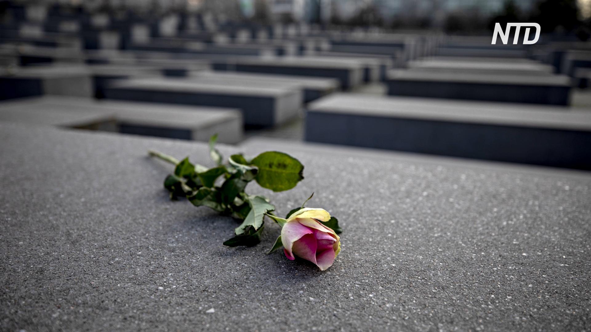 76-ю годовщину освобождения Освенцима отмечают онлайн из-за пандемии