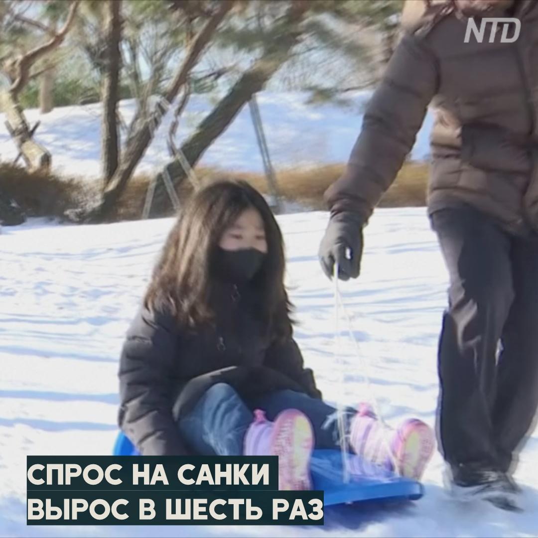 Южнокорейцы из-за снегопада раскупили в магазинах все санки