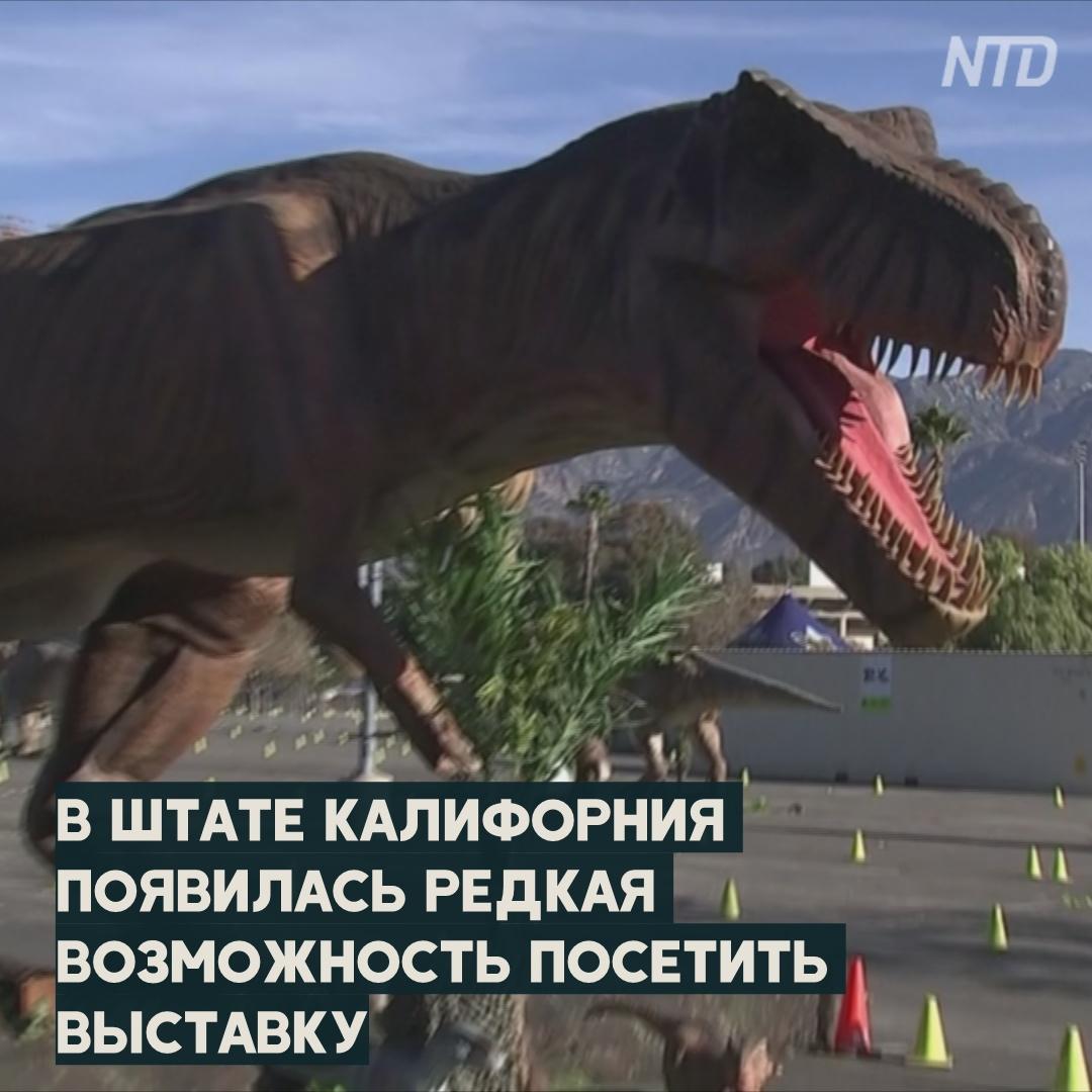 Выставка динозавров в реальную величину в США: въезд только на авто