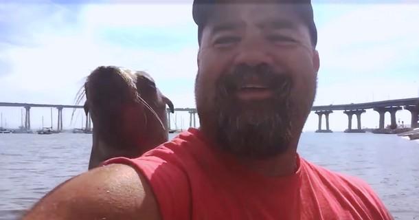 Novyj risunok 1 1 - Мужчину сняли на видео с неожиданным морским гостем в лодке
