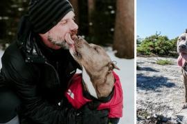 Как бывший наркоман и собака помогли друг другу