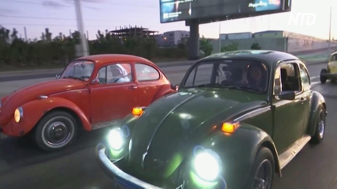 Поклонники легендарных «Жуков» каждую неделю проводят парад в Каире