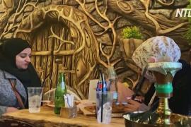 Деревья и ветки: палестинец придумал необычный интерьер для кафе
