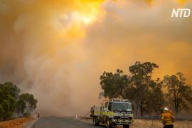 Лесной пожар в Западной Австралии: сгорело более 70 домов