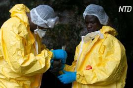 В ДР Конго зарегистрировали новый случай Эболы