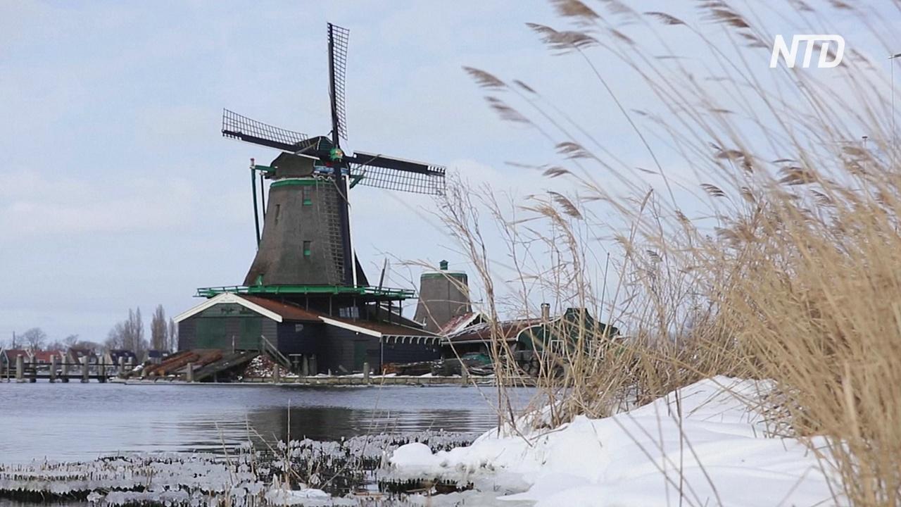Снег, солнце и мельницы: нидерландцы радуются погоде и выходят гулять