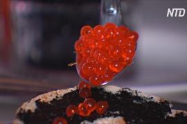 Икра и котлеты из водорослей: новая разработка австралийских учёных