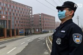 Сотрудник ВОЗ: Китай отказался предоставлять данные о ранних случаях COVID
