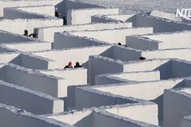 Канадцы построили огромный снежный лабиринт, превзойдя собственный рекорд