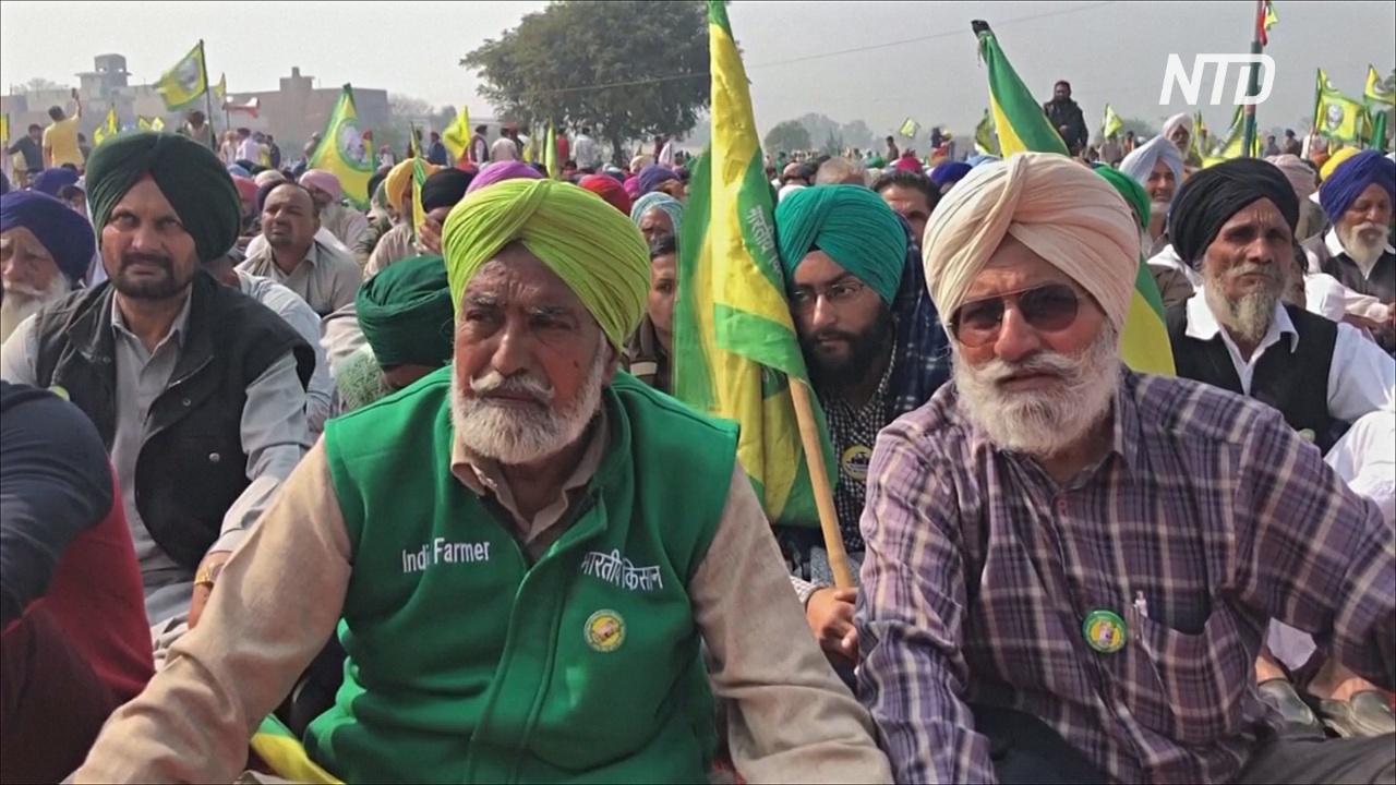 Около 130 тысяч фермеров вышли на протест против аграрной реформы