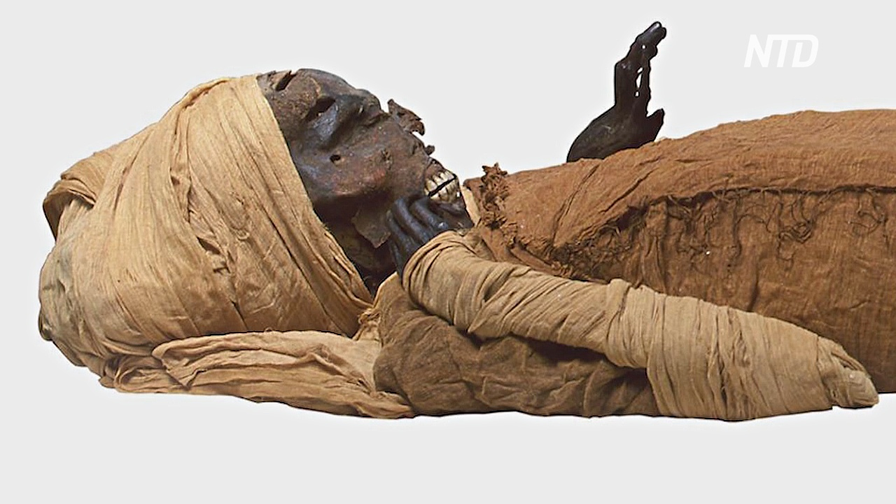 Компьютерная томография раскрыла мучительную смерть фараона