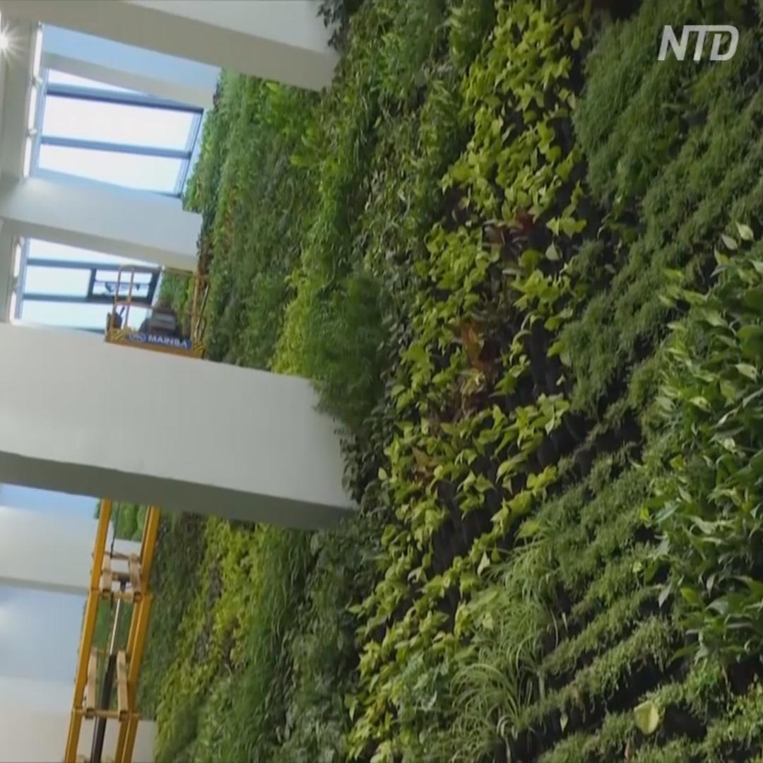 Крытый вертикальный сад высотой 17 м появился в Испании