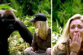 Зачем мужчина приехал на встречу с гориллами в джунгли с женой