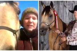 Как девушка на лошади помогла дальнобойщику