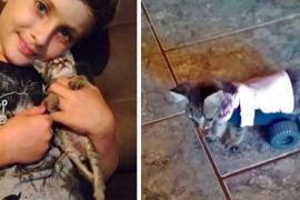 Как изобретение мальчика изменило жизнь котёнка
