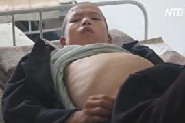 Эксперт ООН: страны мира игнорируют преступления против человечности в КНДР