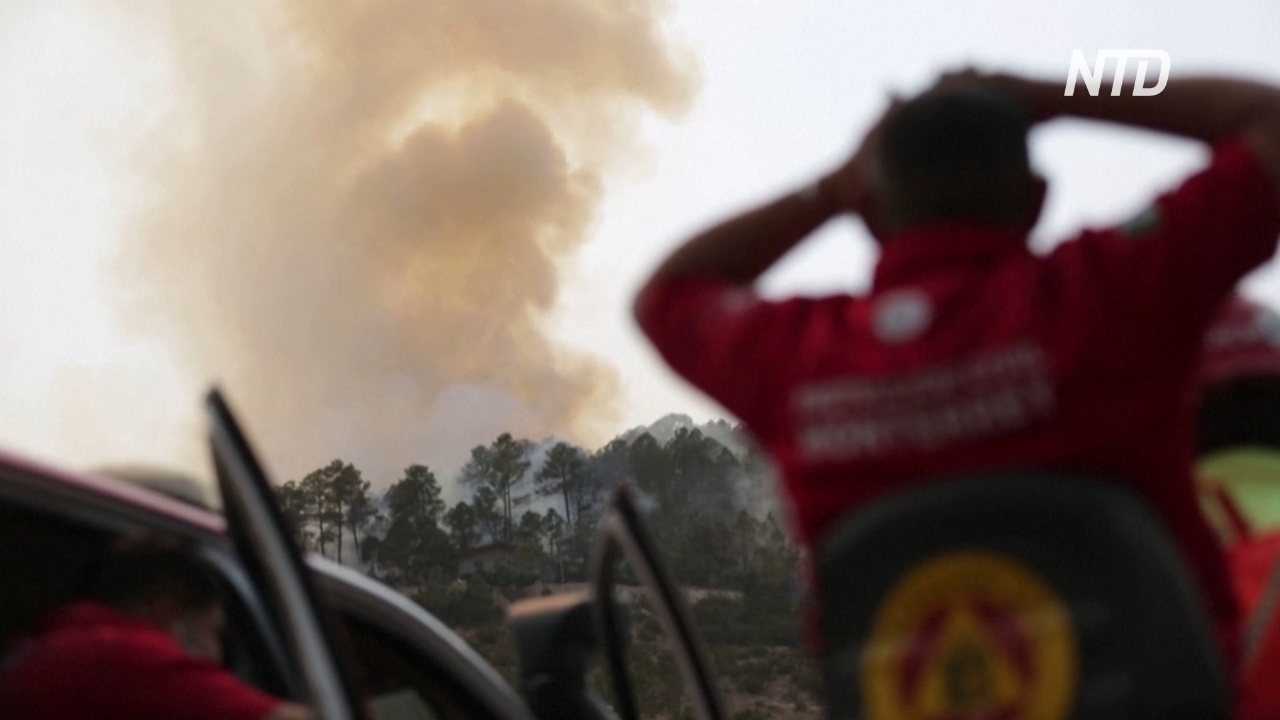 На северо-востоке Мексики полыхает масштабный лесной пожар