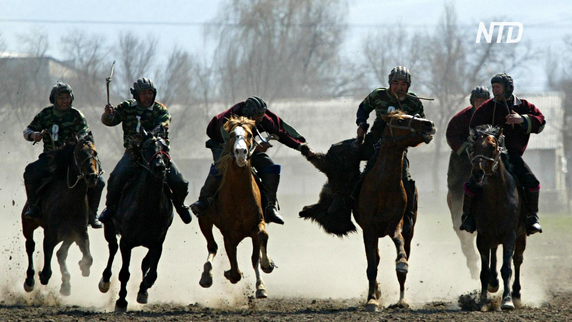 Туша козла и перетягивание каната: как две кыргызские деревни отметили Новруз