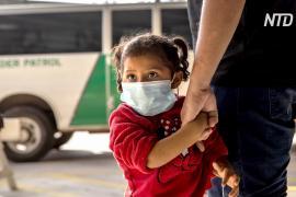 Как и почему контрабандисты везут больше детей к границе США