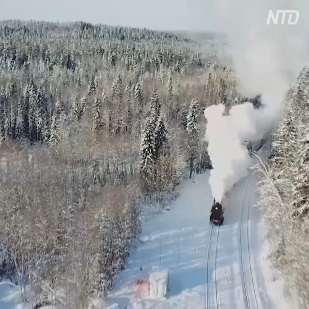 Пассажиры ретропоезда любуются лесами Карелии