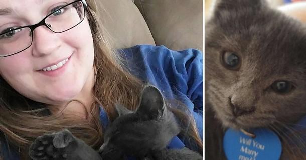 Как бездомный котёнок помог любящей паре изменить жизнь