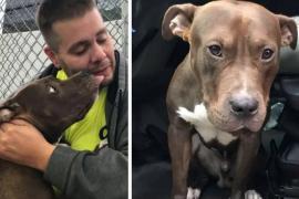 Мужчина проехал через всю страну, чтобы спасти пса от смерти