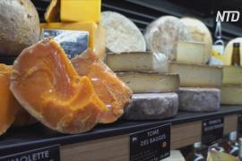 Дорогой сыр стал отдушиной для французов во время «локдауна»